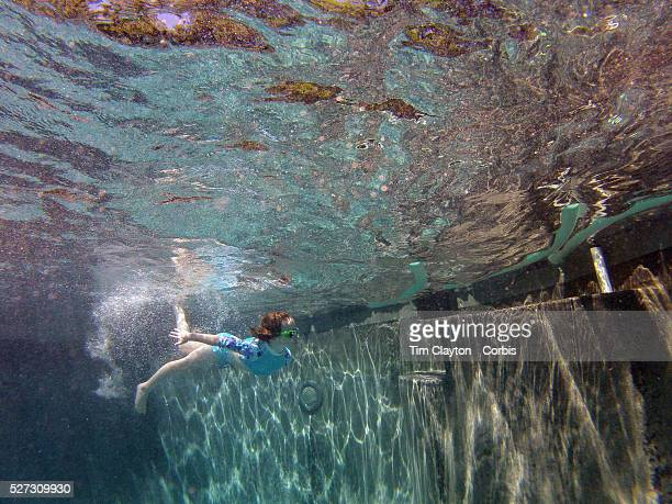 A six year old girl swimming underwater in her back yard family swimming pool Connecticut USA Photo Tim Clayton