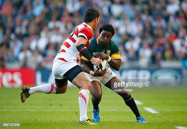 Siya Kolisi of South Africa in action during the 2015 Rugby World Cup Pool B match between South Africa and Japan at the Brighton Community Stadium...