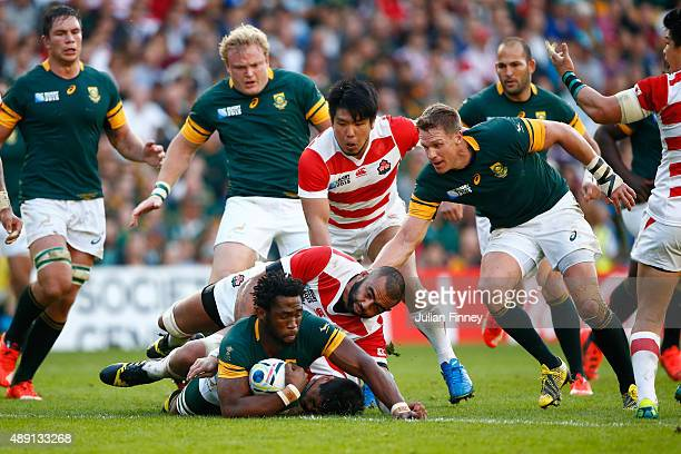 Siya Kolisi of South Africa is tackled during the 2015 Rugby World Cup Pool B match between South Africa and Japan at the Brighton Community Stadium...