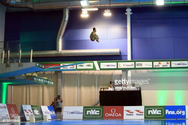 Siyi Xie of China competes in the Men's 3m Final during the 2017 FINA Diving World Series at the Windsor International Aquatic and Training Centre on...
