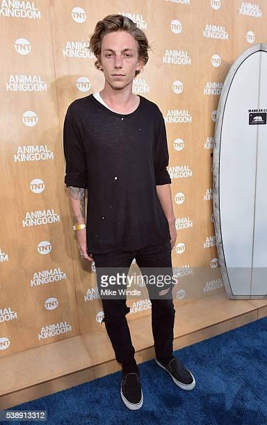 Skateboarder Ben Nordberg attends the TNT 'Animal Kingdom' S1 Premiere on June 8 2016 in Venice California 26227_001