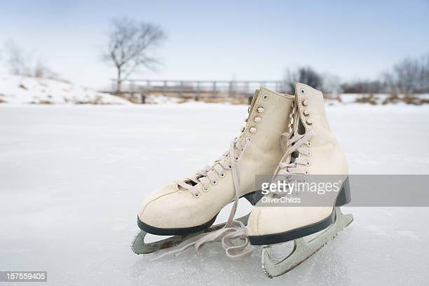 Skates on a frozen pond.