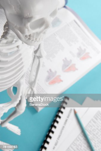Skeleton and science textbook : Foto stock