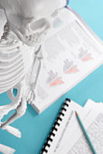 Skeleton and science textbook