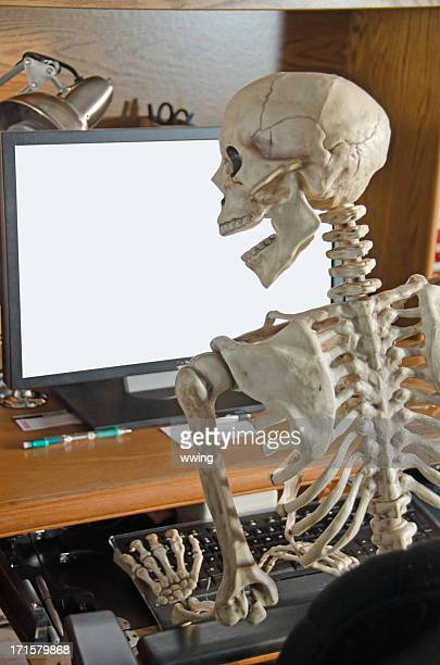 Skeleton on Computer