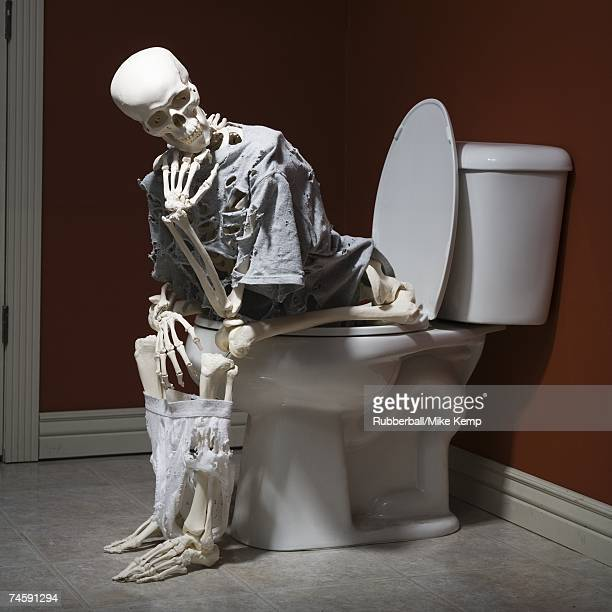 Skeleton on toilet with shredded clothing