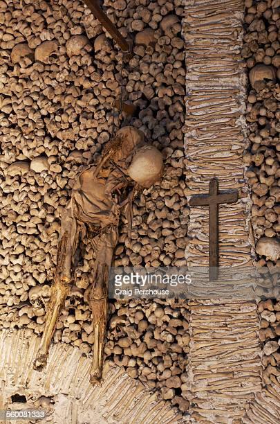 Skeleton, skulls and bones in Capela dos Ossos.