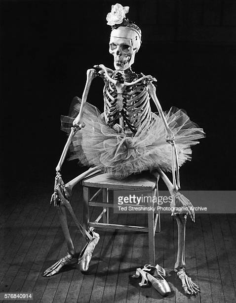 A skeleton used by a ballet teacher for showing students how their bones move sits poised on a chair San Francisco 1956