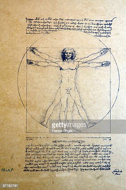 A sketch titled 'The Man of Vitruvio' by Leonardo is shown on display at the Leonardo Da Vinci exhibition vernissage at the Uffizi Gallery on March...