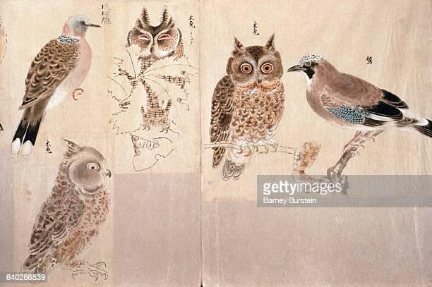 Sketches of Birds by Ogata Korin