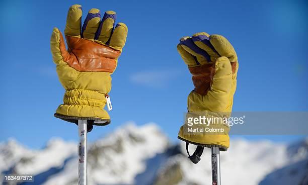 Ski gloves and mountains
