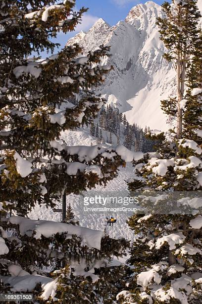 Ski lift carrying skiers to the top of Albion Basin in Alta Ski Resort in the Wasatch Mountains of Utah USA with Superior Peak in the background