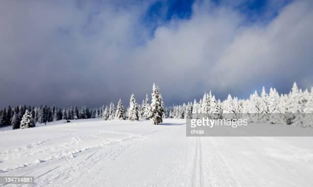 Ski-Läufer auf einem schönen winter day.Rogla, Slowenien