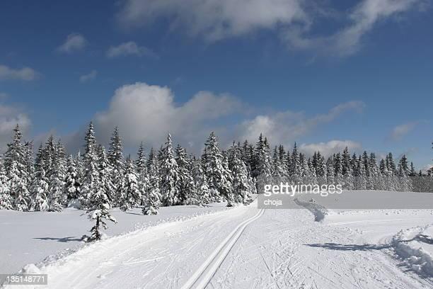 Ski runner on a beautiful winter day....Rogla,Slovenia