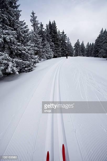 Course de Ski en hiver sur un magnifique day.Rogla, la Slovénie