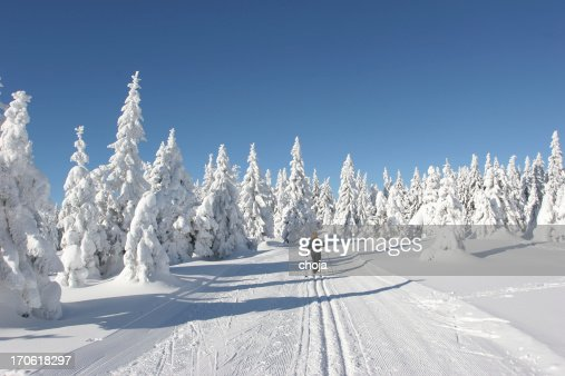 Ski runner on a beautiful winter day....Rogla,Slovenia