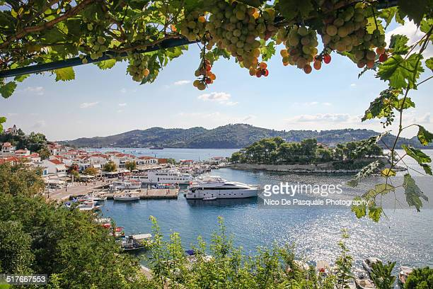 Skiathos' Port
