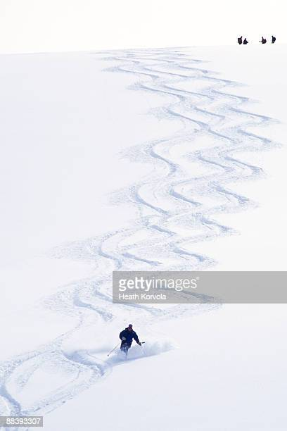 A skier laying down some fresh tracks.