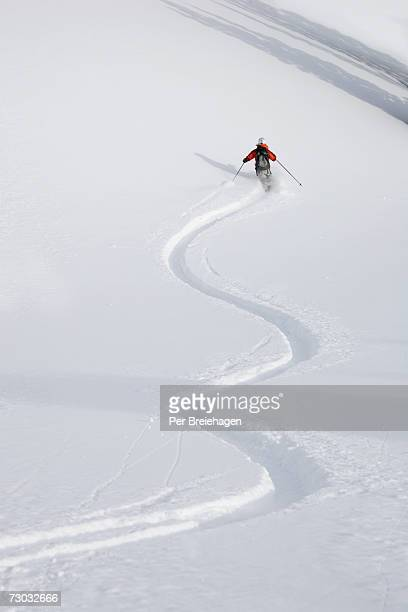 Skier skiing, rear view, Wasatch Mountains, Utah, USA, elevated view
