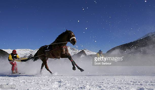 Skiers are pulled by horses in the skikjoering race during the White Turf race meeting held on the frozen surface of Lake St Moritz on February 4...