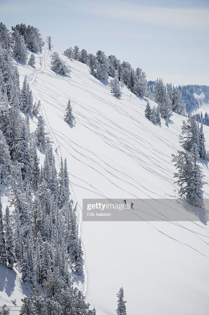 Skiers on mountain, Wasatch Mountains, Utah, United States