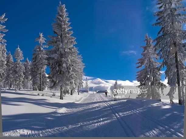 Skiing area Bretterschachten