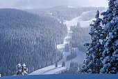 Skiing in Vail Colroado Winter Wonderland - scenic mountains, ski slopes and frosted trees after fresh snowstorm.