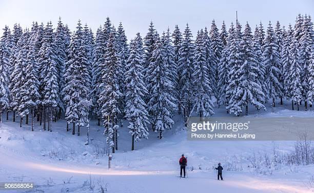 Skiing through a Christmas card