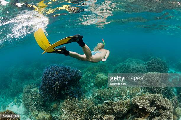 Skin Diving at Palau Micronesia Palau