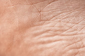 full frame of skin texture, abstract background.