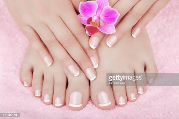 Soins de la peau d'un pieds de femme de beauté