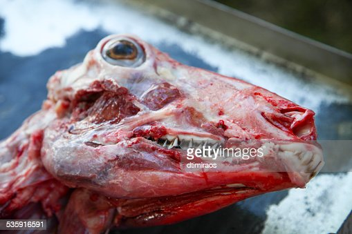 Skinned and butchered goat prepared for cooking : Stock Photo