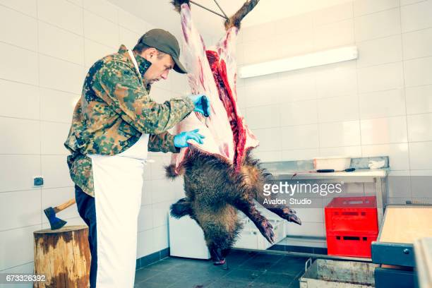 Dépouillée de chasseur chasse sanglier