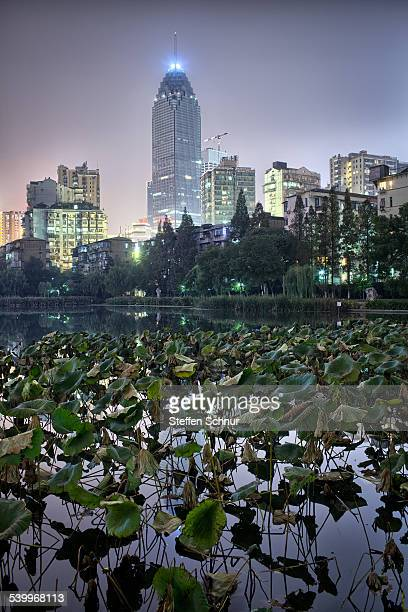 Sksyscraper with water lilies - city and nature