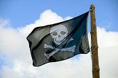 Skull and crossbones flag