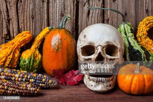 Skull and gourds, an autumn Halloween still life : Stock Photo