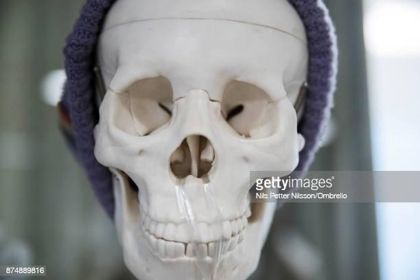 A skull during the Sime Awards at Epicenter on November 16 2017 in Stockholm Sweden