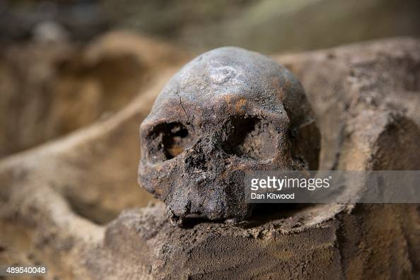 A skull forms part of a collection of bones that were found among the stepped footings of Westminster Abbey's south transept on September 21 2015 in...