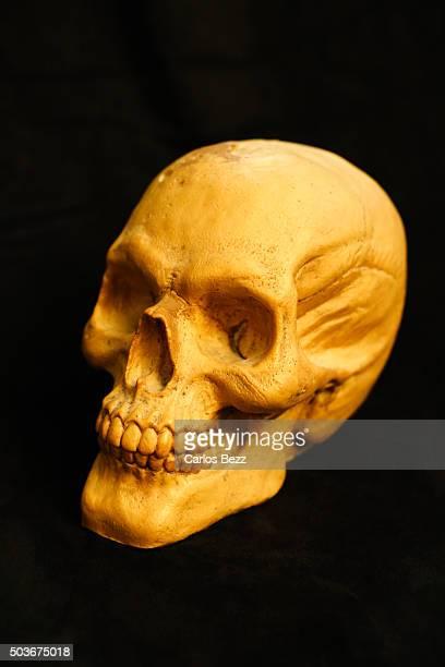 Skull on black background