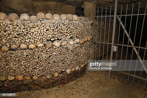 Skulls and bones are stacked at the Catacombs of Paris on October 14 2014 These underground quarries were used to store the remains of generations of...