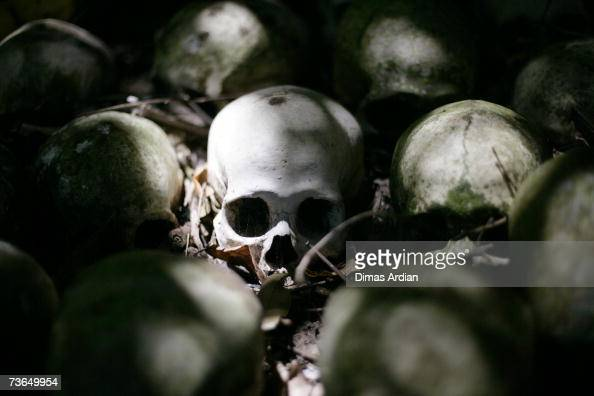 Skulls are positioned at a village cemetery in Kuban on March 21 2007 near Trunyan Bali resort island Indonesia Unlike the Balinese people the people...