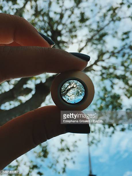 Sky And Tree Refracted In Glass Object Held By Woman
