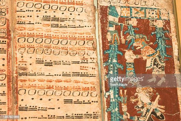 A sky caiman vomits water on one of the last pages of the 12thcentury Dresden Codex also known as the 'Codex Dresdensis' one of four historic Mayan...