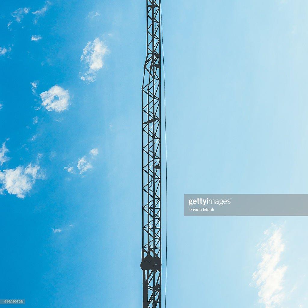 Grou do céu : Foto de stock