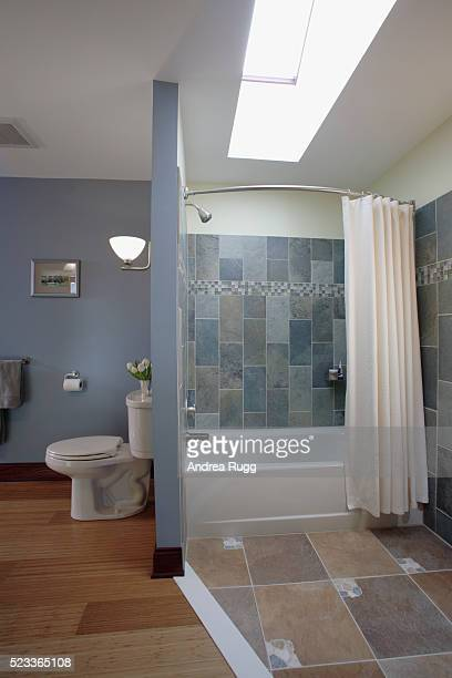 Skylight Above Bathtub in Contemporary Bathroom