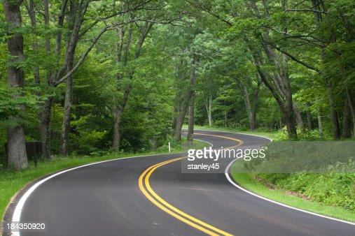 Skyline Drive, Shenandoah National Forest, Virginia