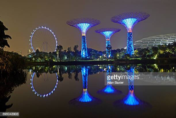 Skyline of Singapore's Gardens by the bay at night