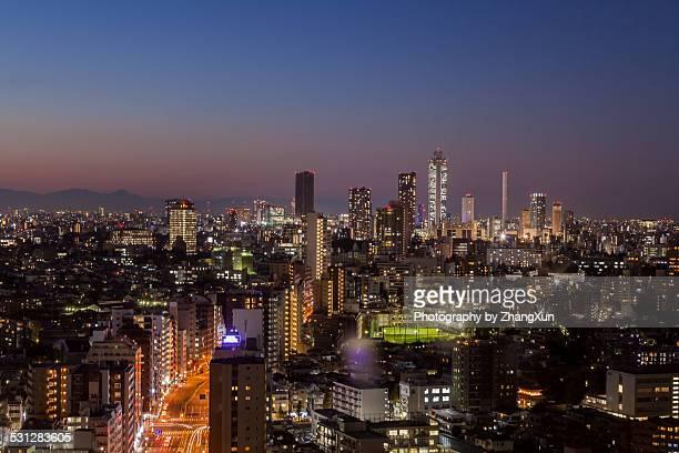 Skyline of Tokyo Shinjyuku cityscape at night