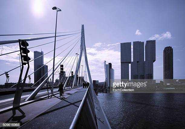 Skyline with Erasmus Bridge and De Rotterdam