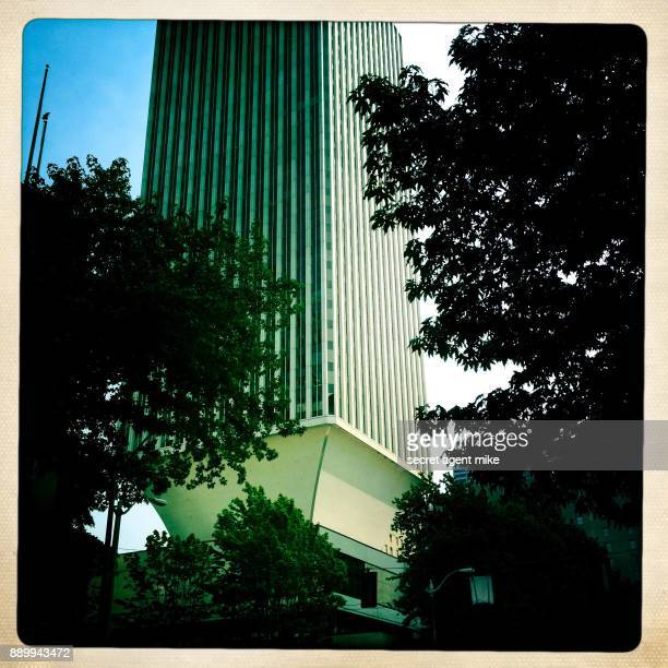 skyscraper with trees in foreground